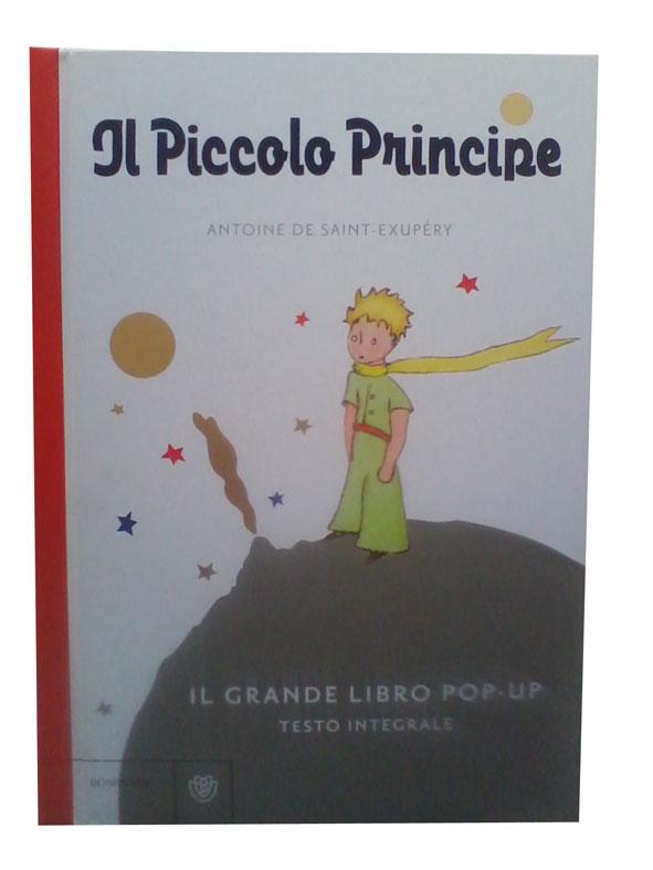 piccolo-principe1